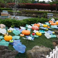 제주 유리의 성 여행 사진