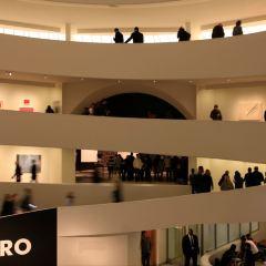 구겐하임 미술관 여행 사진