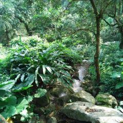 Fushan Range Scenic Spot User Photo