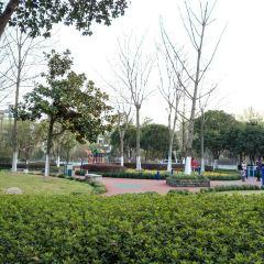 劍橋公園用戶圖片