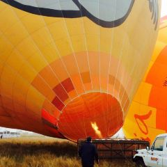 Hotair Balloon Ride and O'Reilly's Vineyard Champagne Breakfast User Photo