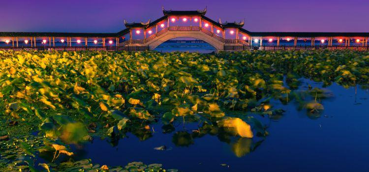 Jinxi Ancient Town1