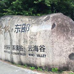 OCT Valley, OCT East User Photo