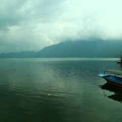 Kintamani User Photo