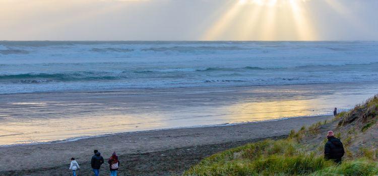 Muriwai Beach1
