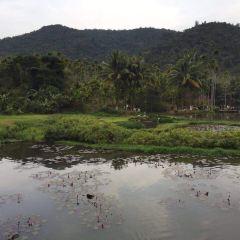 檳榔谷用戶圖片