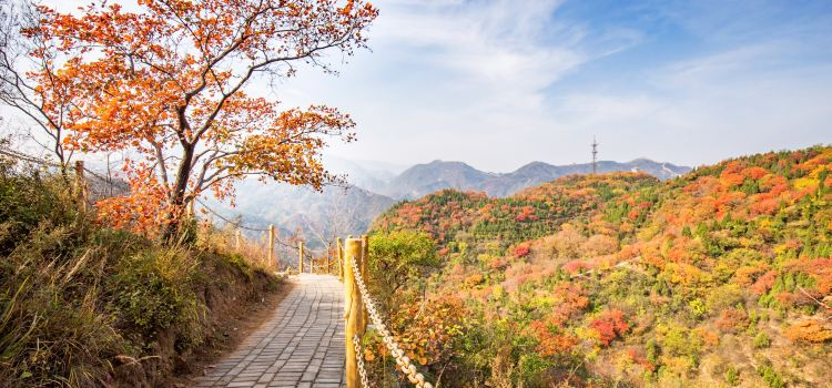 Badaling National Forest Park3