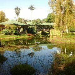 Jardin Botanico Jose Celestino Mutis travel guidebook –must ...