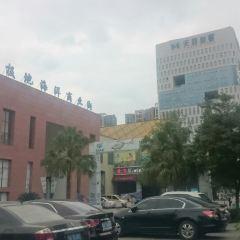 청두 하이창 폴라 오션파크 여행 사진