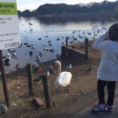 大串貝塚ふれあい公園用戶圖片