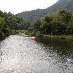 養生河用戶圖片