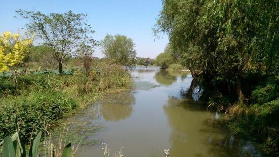 圖影生態濕地文化園