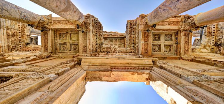 The Celsus Library1