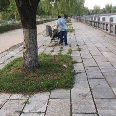 Yellow River Old Embankment User Photo