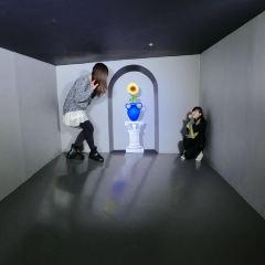 Trickeye Museum Seoul User Photo