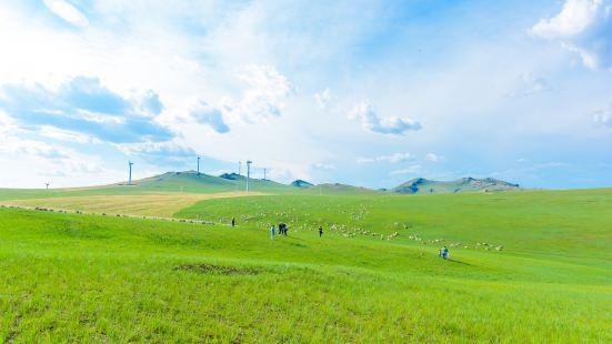 Huhenuo'er Grassland Tourist Attraction