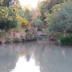 에이번 강 여행 사진