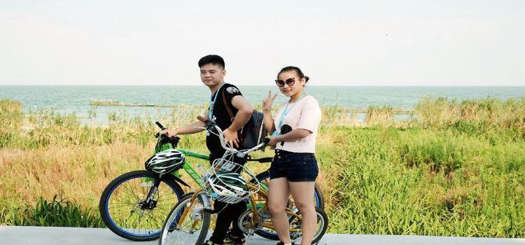 宜興丁蜀太湖綠道騎行3