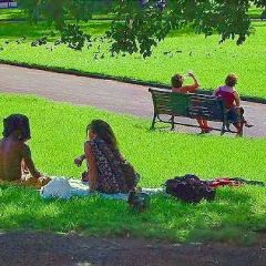 Belmore Park User Photo
