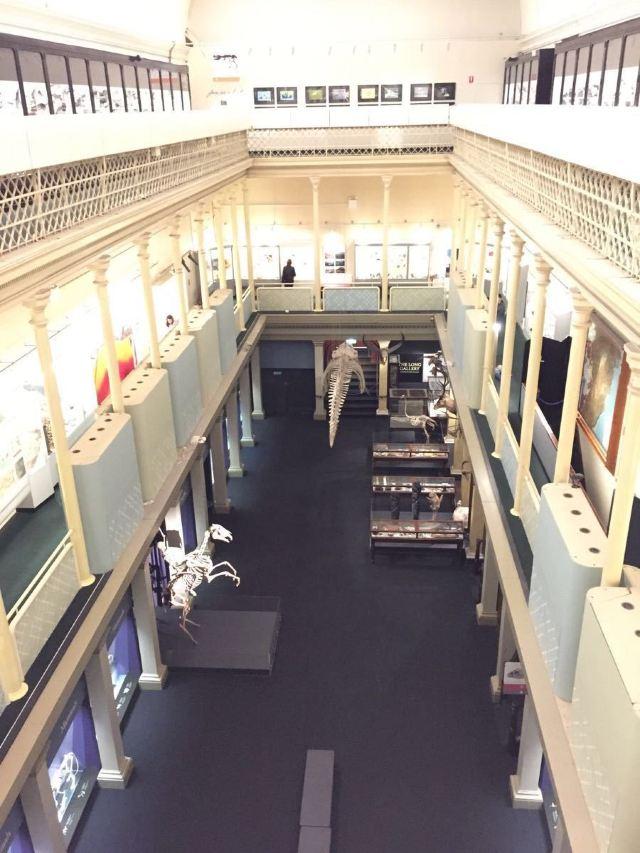 Museum of Sydney