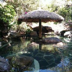 蒲縹溫泉度假村用戶圖片