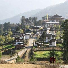 不丹傳統醫藥研究所用戶圖片
