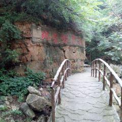 ShilinGorge User Photo