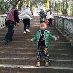 新津老君山用戶圖片