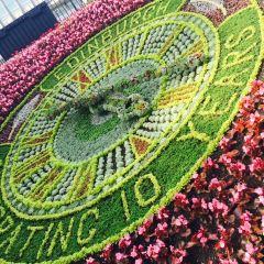 Princes Street Gardens User Photo