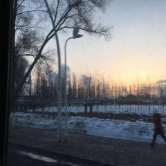 石化公園のユーザー投稿写真