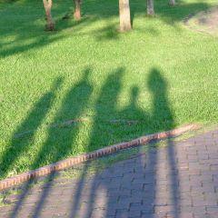 Sheding Natural Park User Photo