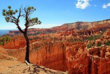 布莱斯峡谷国家公园-犹他州-是条胳膊