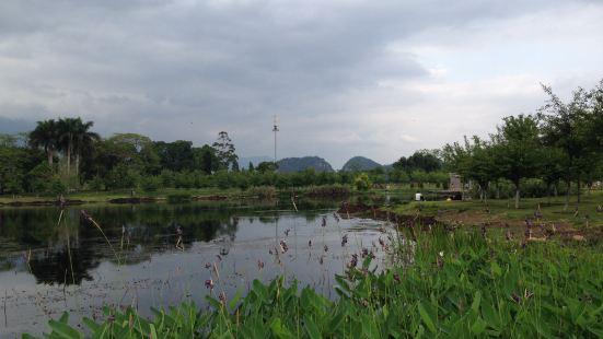 南湖濕地公園