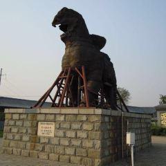 Iron Lion of Cangzhou User Photo