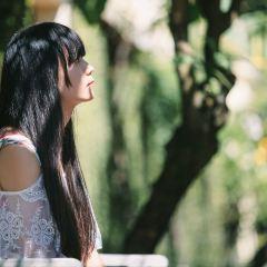 Garden Of Dreams User Photo