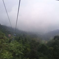 雲頂遊樂園用戶圖片