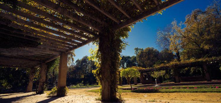 마리아 루이사 공원2