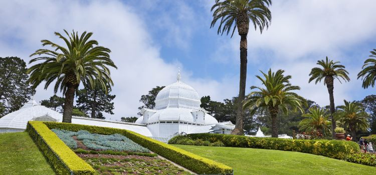 Conservatory of Flowers1