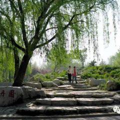 Puhu Park User Photo