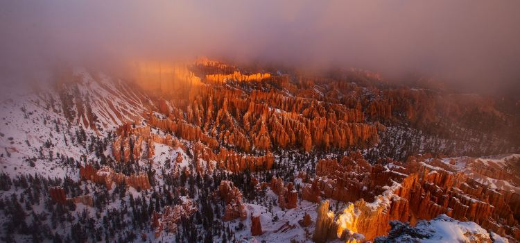 Bryce Canyon National Park3