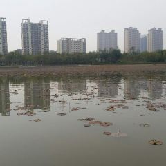 Xinhu Scenic Area User Photo