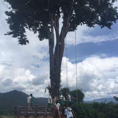 Tha Pai Hot Springs User Photo