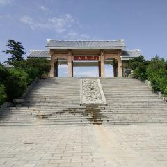 Jiulongyu User Photo