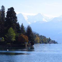 Lake Thun User Photo