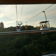 Tangxia Sightseeing Park User Photo