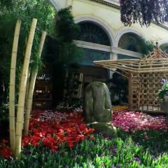 벨라지오 정원 여행 사진