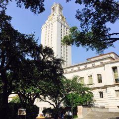 University of Texas at Austin User Photo