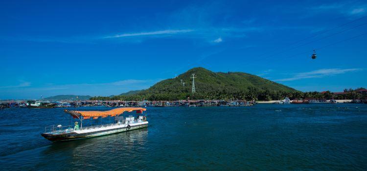 南灣猴島2