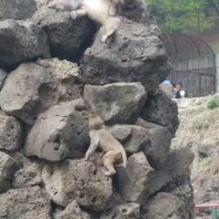 금강산공원 여행 사진