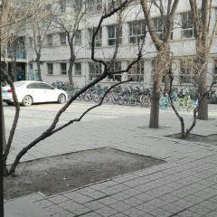 Huabeidianli University User Photo
